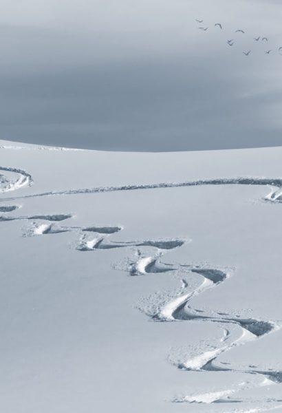Kurz skialpinismu: Krkonoše