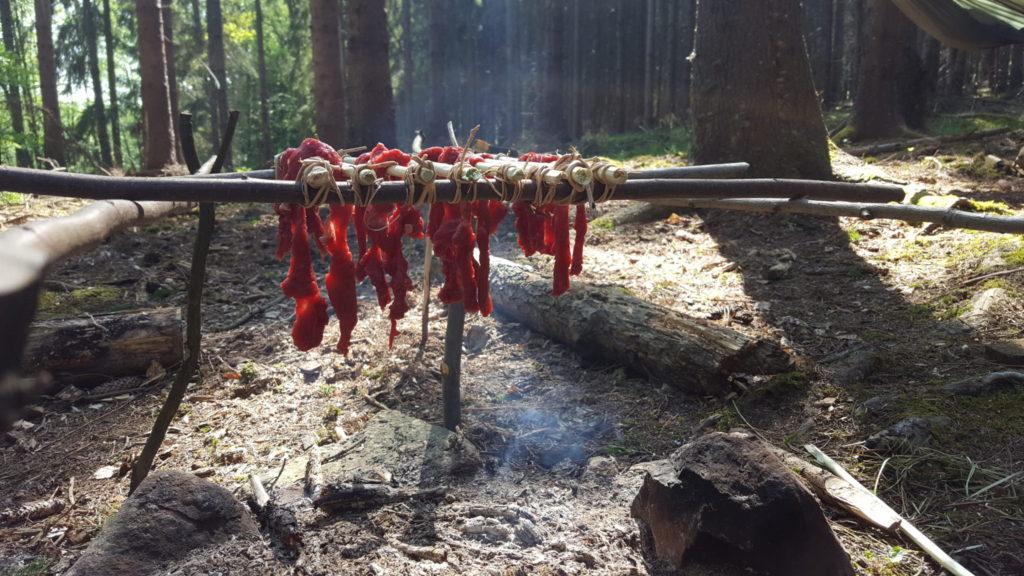 Kurz přežití v divočině: Jídlo z přírody